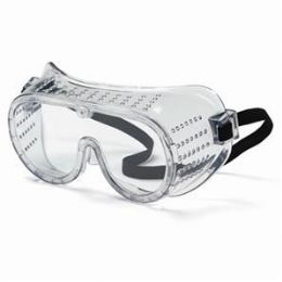 24 of Protective Goggles