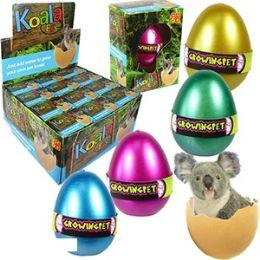 48 of Growing Pet Koala Eggs