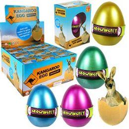 48 of Growing Pet Kangaroo Eggs