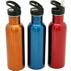24 of Stainless Steel Water Bottle, 25 Oz.- 10-3/4""