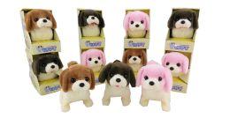 72 of B/o Dog With/ Color Box