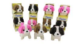 36 of B/o Dog With/ Color Box