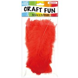 120 of Diy Feather Red