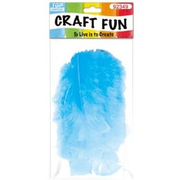 120 of Diy Feather Baby Blue
