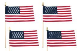 48 of Usa Flag