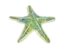 24 of Wild Republic Plush Green Glitter Starfish