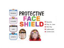 48 of Childs Face Shield 4 Asst