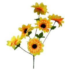 36 of 6 Head Sun Flower