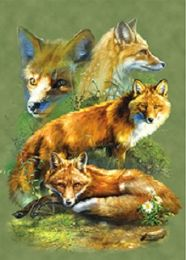 40 of 3D Picture Red Fox