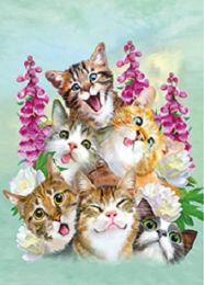 40 of 3D Picture Six Happy Kittens