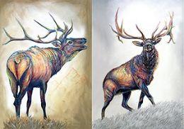40 of 3D Picture Elk