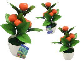 72 of 5 Head Oranges In Flower Pot