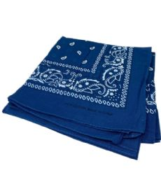 300 of Paisley Bandana In Navy Blue Color