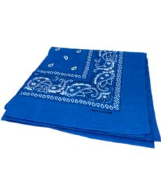 300 of Paisley Bandana In Torquoise Color