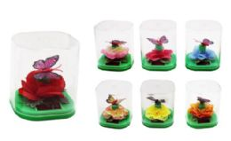 36 of Floating Butterfly Sunny Jiggler
