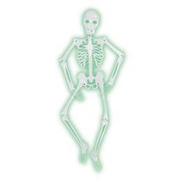 6 of Mr BoneS-A-Glo Skeleton AlL-Weather NitE-Glo Plastic