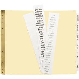 Avery Data Binder Tab Divider