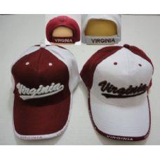 24 of VIRGINIA Hat