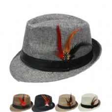 24 of PLAIN FEDORA HAT IN ASSORTED COLOR WITH FEATHER