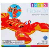 6 of LOBSTER RIDE ON WATER TUBE WITH HANDLES IN COLOR BOX