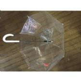 48 of CLEAR BUBBLE UMBRELLA
