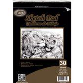 "12 of 30 Sheet Sketch Pad - 11.75"" X 16.5"""
