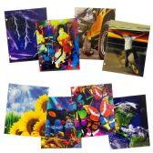96 of Wholesale Kids Portfolio folder in 2 Assorted Prints