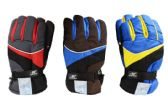 24 of Mens Ski Gloves Large