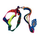 """24 of Rainbow Dog Harness with 48"""" Leash [Small-Wide]"""