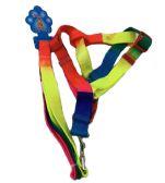 "24 of Rainbow Dog Harness with 48"" Leash"