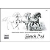 "48 of 20 Ct. 18"" X 12"" Premium Sketch Pad"